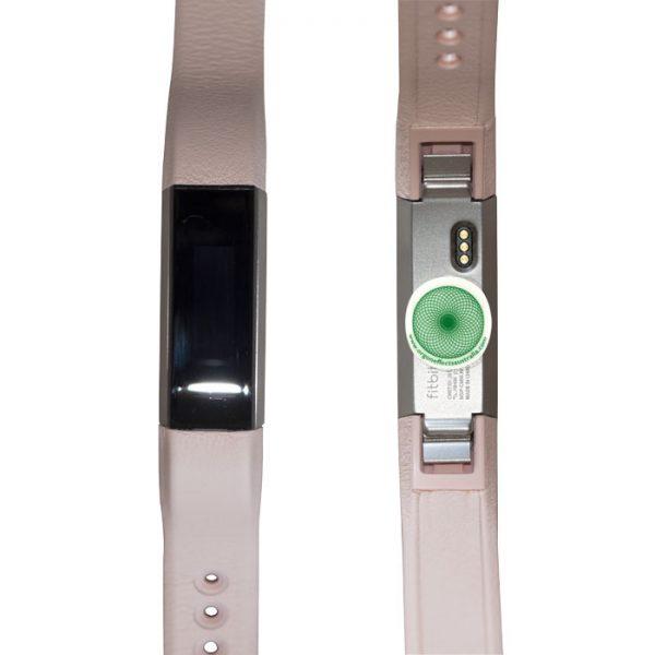 FitBit-ladies-harmonizer