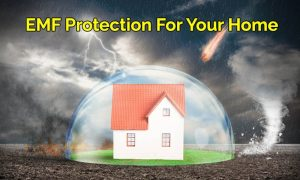 emf-protection-home